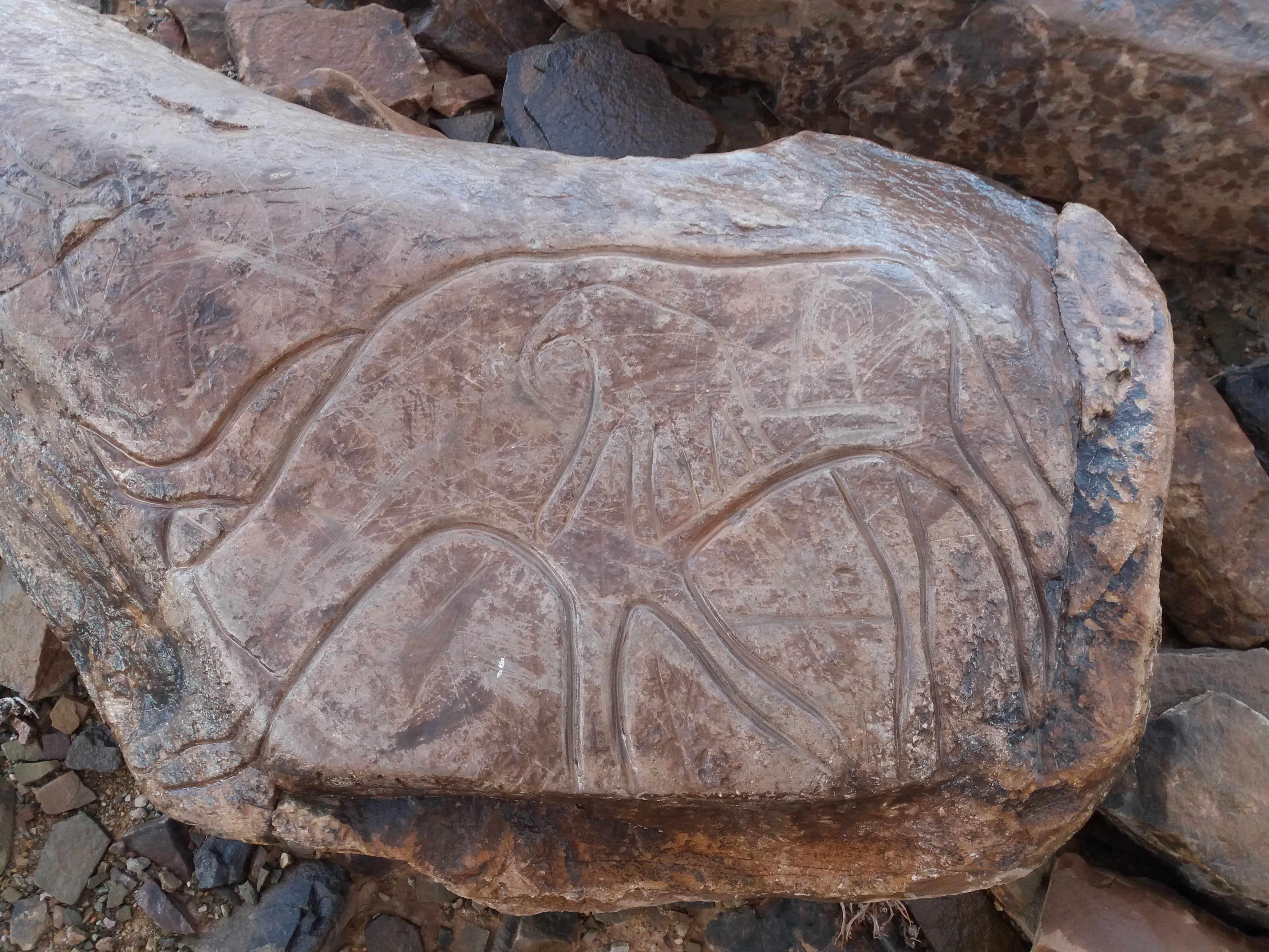 Roadbook – Die Steingravuren bei Tazzarine